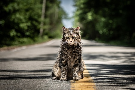 PET SEMATARY, from Paramount Pictures.
